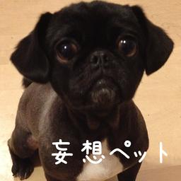 スマートフォンアプリ「妄想ペット」をAppStoreで提供開始